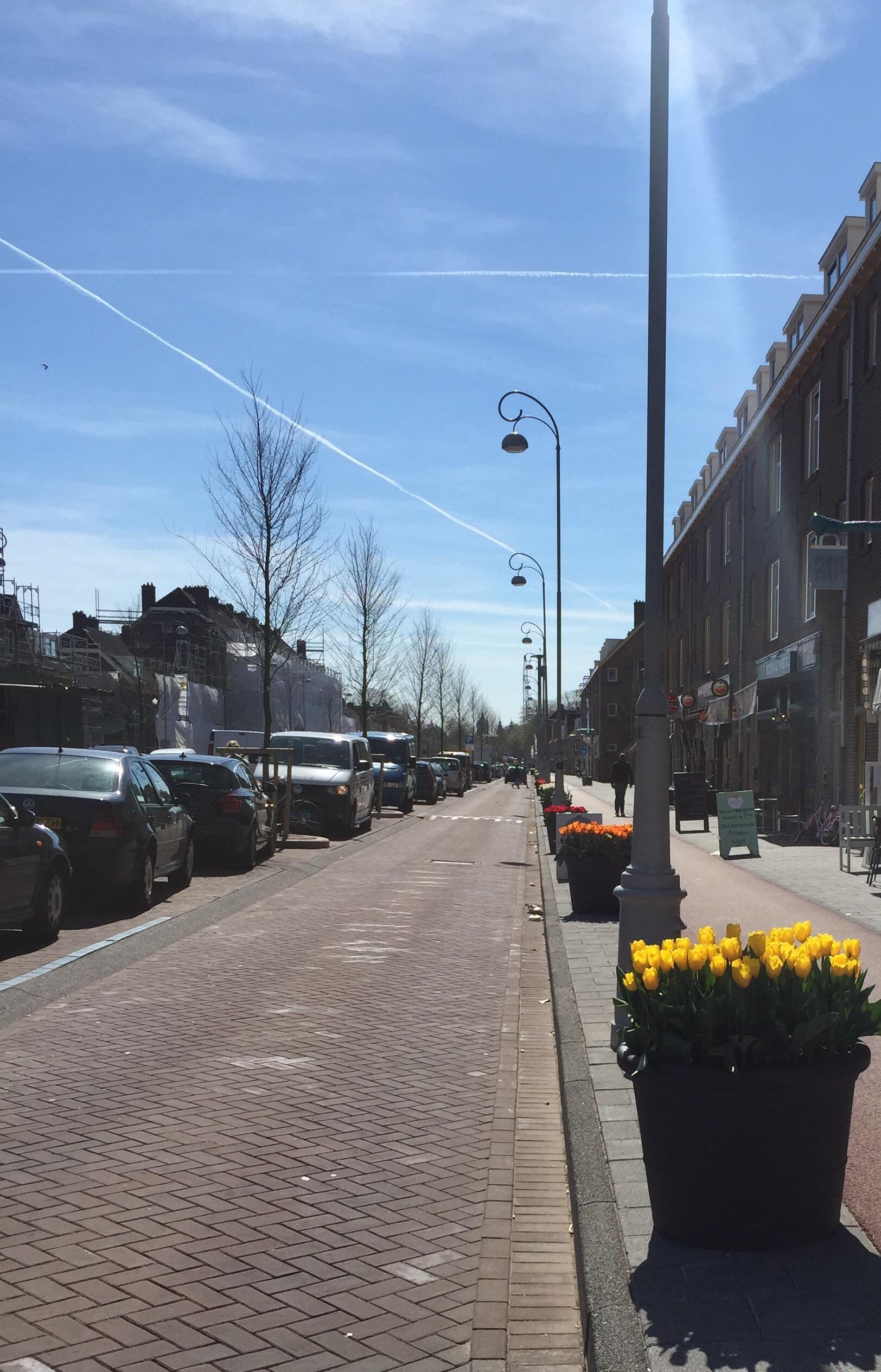 Prachtige tulpenbakken sieren de staat in de Van de Pekstraat in Amsterdam Noord.