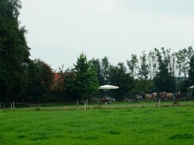 Hoeve la Marotte IJhorst
