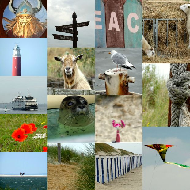 Collage Texel